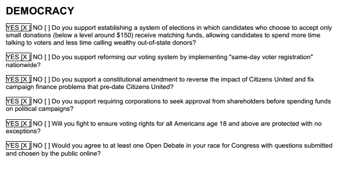 Ruben Gallego Democracy Questionaire screenshot